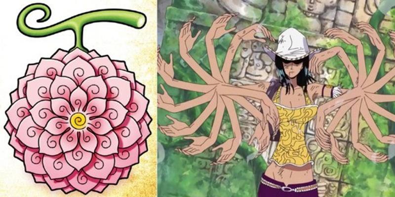Akuma no Mi da Flor